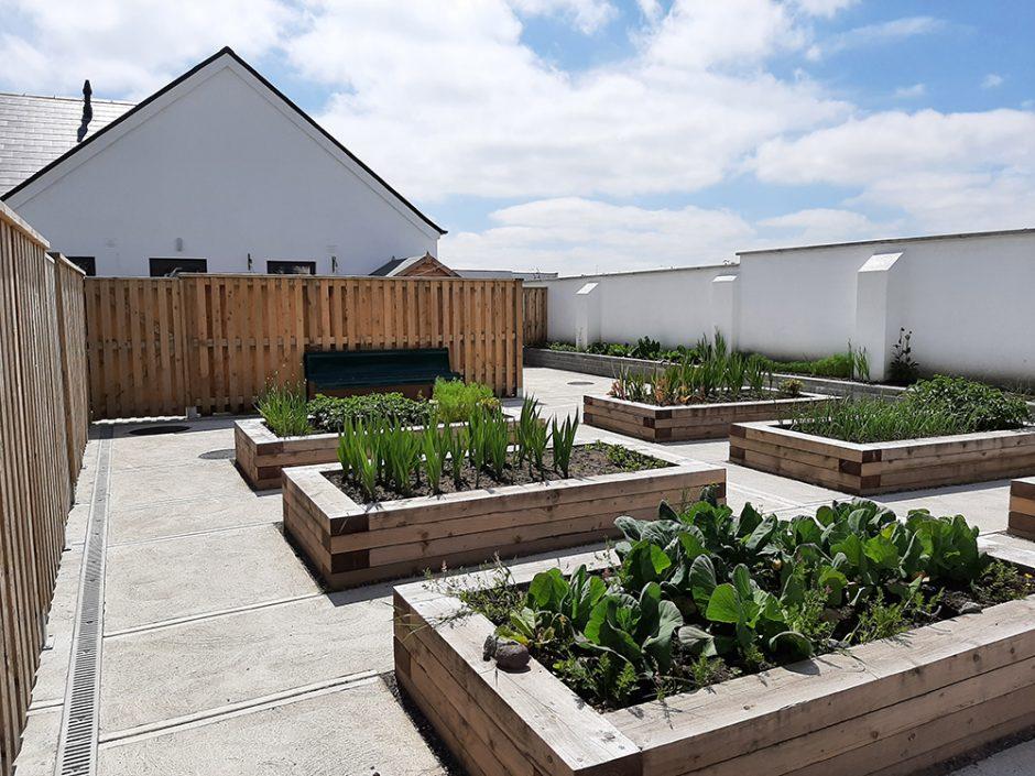 Baile an Rí - garden plots