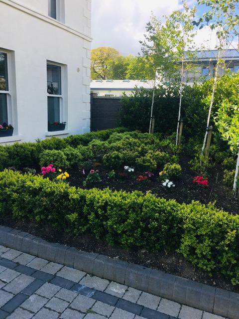 Carriagbrae House - Gardens